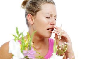 Настой череды от аллергии