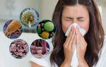 Аллергия на пыльцу у беременных