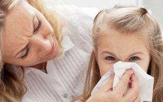 Йоркширский терьер аллергенный или нет