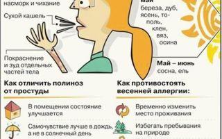 Диета при пищевой аллергии у взрослых