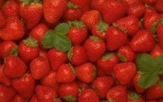Через какое время проявляется аллергия на продукты