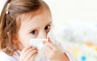 Библиотечная пыль аллергия