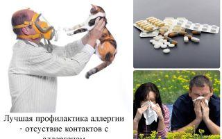 Что делать при аллергической реакции