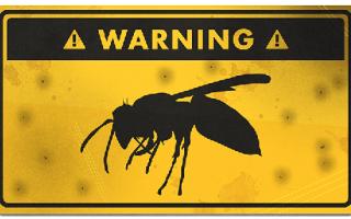 Аллергия на пчелиный яд