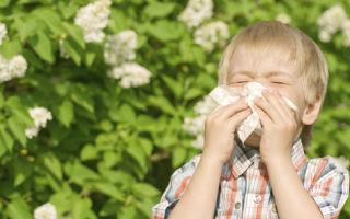 Аллергия у ребенка кашель