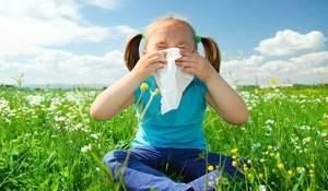 Таблетки от аллергии на амброзию