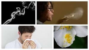 Как вылечить аллергический ринит у ребенка