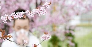 Аллергия спрей для носа