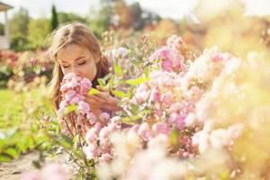 Трава от аллергии для детей