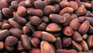 Аллергия на кедровые орехи симптомы