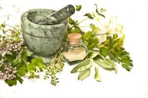 Лечение аллергии травами и отварами