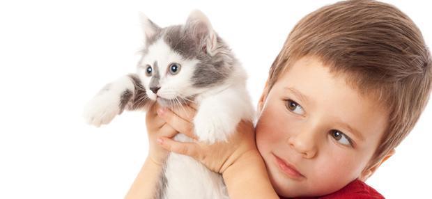Как понять на что аллергия у ребенка