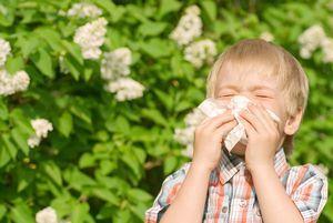 Дают ли при аллергии больничный