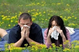 Сенная лихорадка лечение