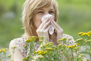 Растения аллергены