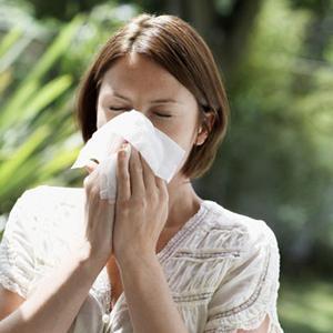 Таблетки от аллергии на полынь
