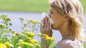 Сколько выводится аллерген из организма