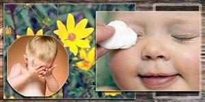 Череда лечебные свойства и противопоказания для детей