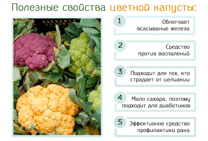 Аллергия на цветную капусту у грудничка
