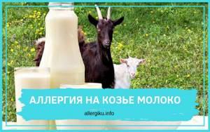 Аллергия на козье молоко