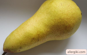 Аллергия на грушу у грудничка