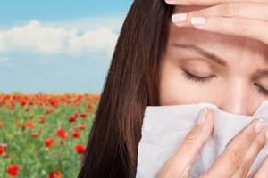 Аллергия на пыльцу