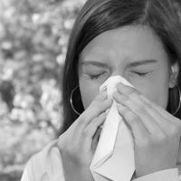 Чем лечить аллергию на амброзию
