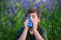 Аллергенные растения список
