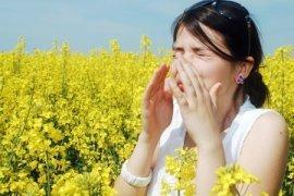 Активированный уголь аллергия