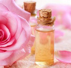 Роза аллергия
