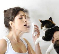 Аллергия лечится или нет
