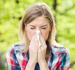 От аллергии температура бывает