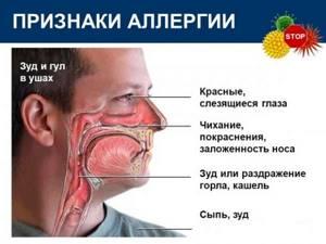 Про аллергию