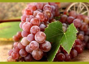 Аллергия на виноград