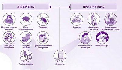 Заложенность носа аллергия лечение