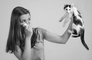 Психосоматика аллергия на коже