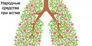 Лечение бронхиальной астмы народными средствами