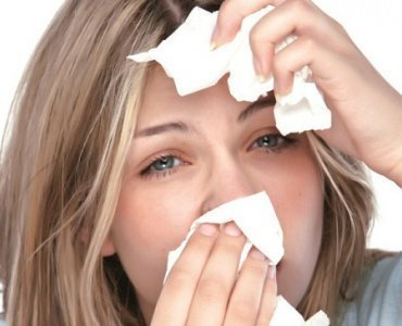 Аллергия на полынь что нельзя есть