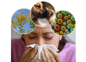 Из за чего возникает аллергия