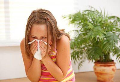 Аллергия на клещей