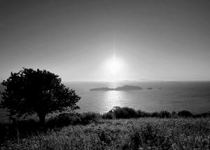 Крем от аллергии на солнце