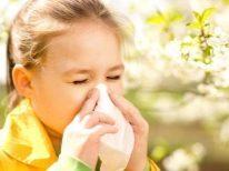 Комаровский о аллергии