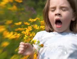 Сельдерей от аллергии