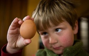 Аллергия на яйца у грудничка
