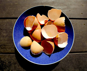 Лечение скорлупой яиц