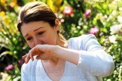 Что принимать при аллергии при беременности