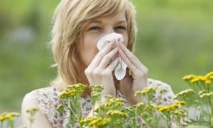 Аллергия на герань как проявляется