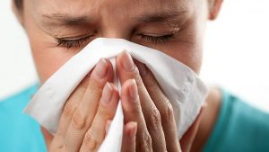 Шиншилла аллергия