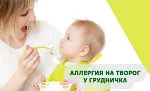 Аллергия на творог агуша у ребенка