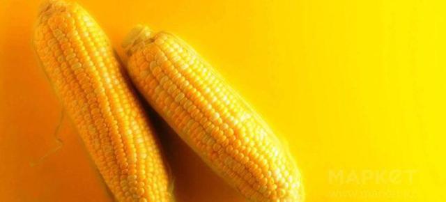 Кукуруза аллерген